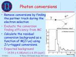 photon conversions