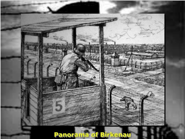 Panorama of Birkenau