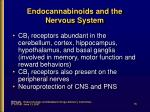 endocannabinoids and the nervous system