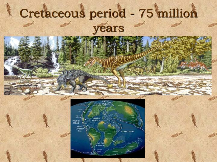 Cretaceous period - 75 million years