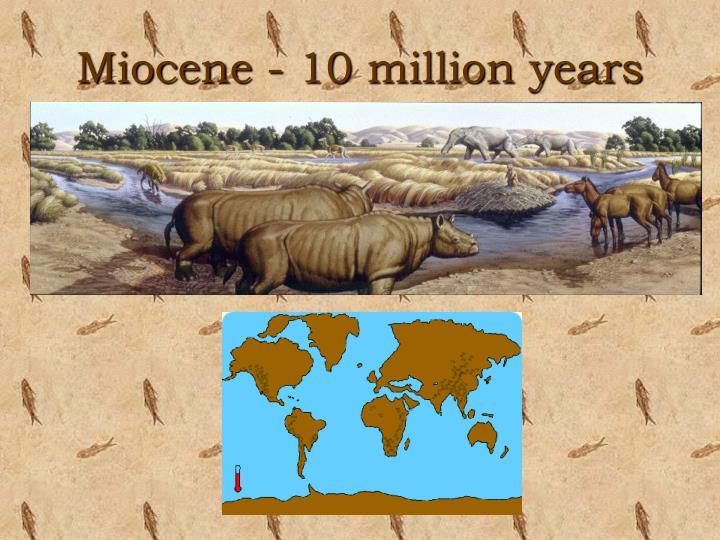 Miocene - 10 million years