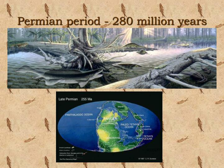 Permian period - 280 million years