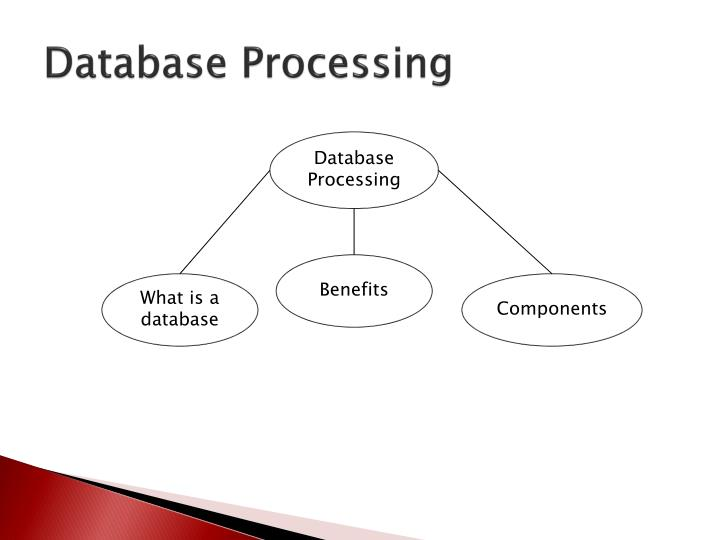 a look at database processing applications essay Electronic data processing (epd) is the process of collecting data and processing them to produce meaningful information by using computers, processing software and standard database tools it is the latest technique for processing large chunks of data it is a fast, efficient and reliable technique.