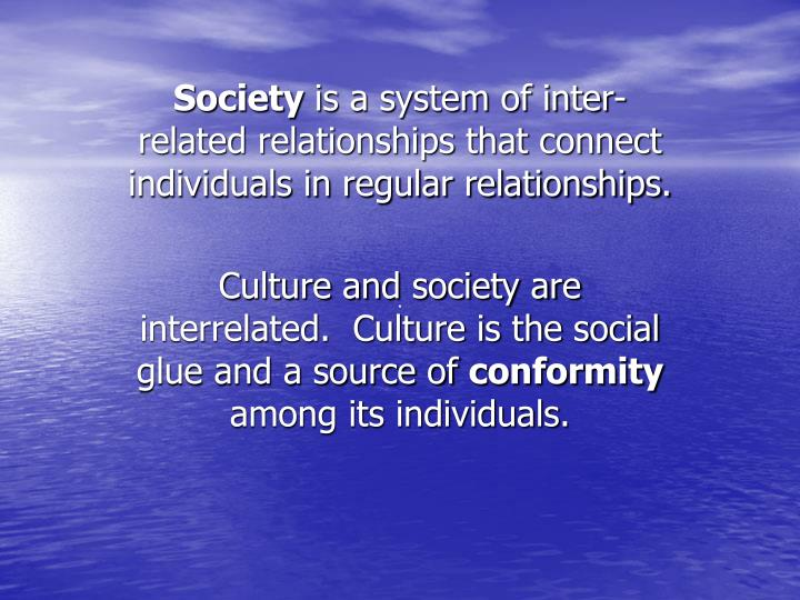 culture is the social glue that