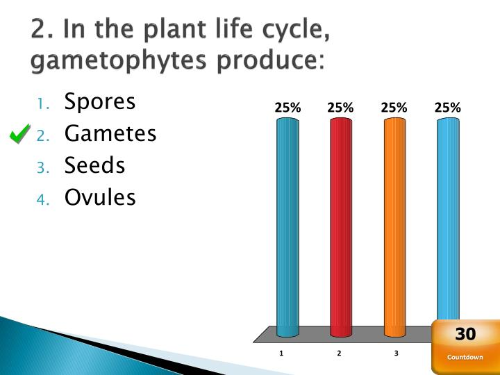 2. In the plant life cycle, gametophytes produce: