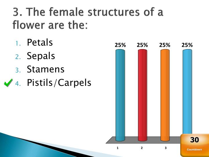 3. The female structures of a flower are the:
