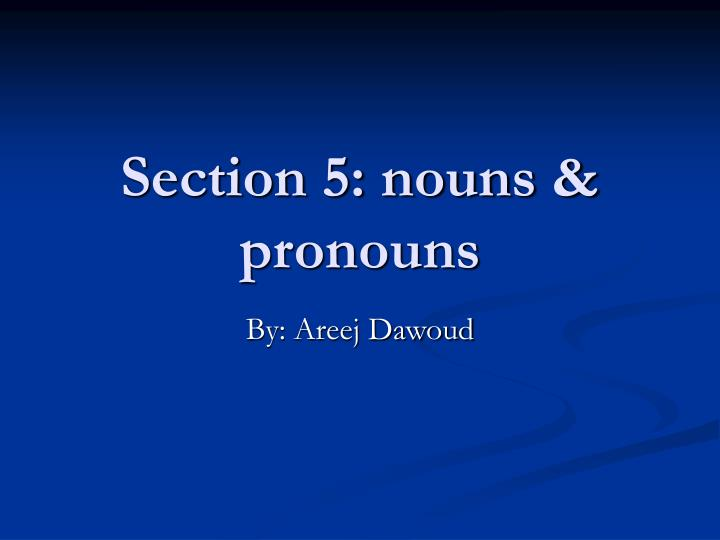 section 5 nouns pronouns n.