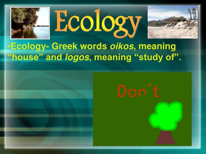 ecology greek words oikos meaning house and logos meaning study of n.