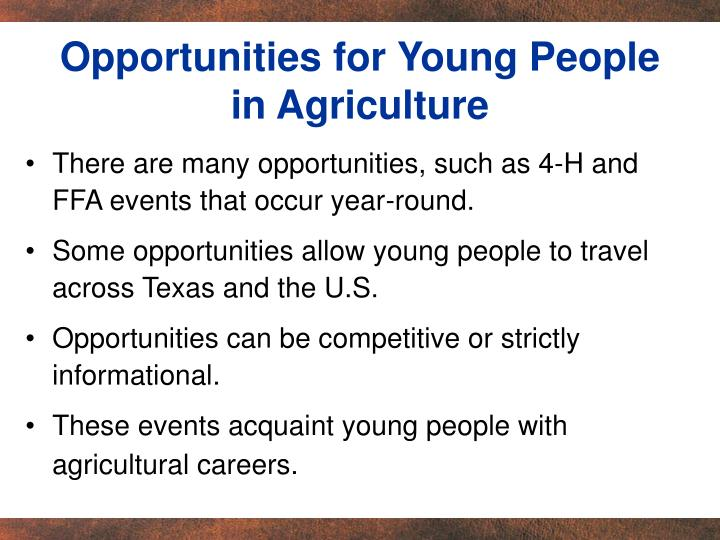 Opportunities for Young People