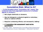 cumulative risk what is it