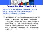 cumulative risk what is it1