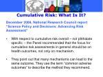 cumulative risk what is it2