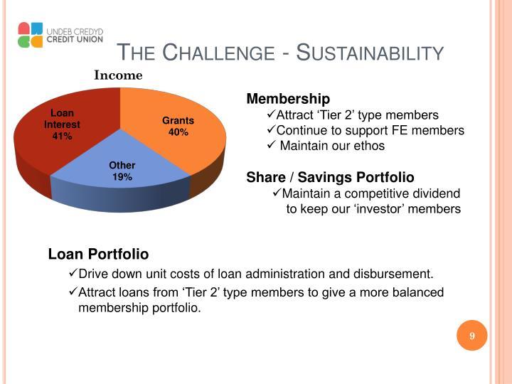 The Challenge - Sustainability