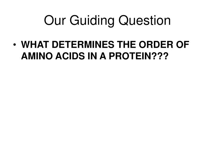 our guiding question n.