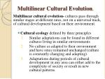 multilinear cultural evolution