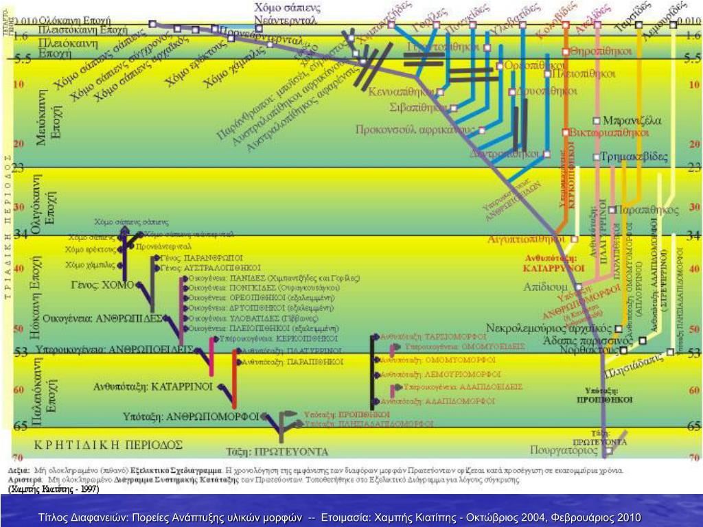 PowerPoint σχετικά με την χρονολόγηση άνθρακα