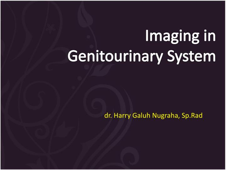 i maging in genitourinary s ystem n.