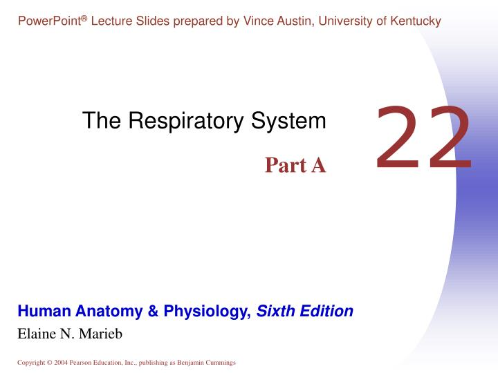 the respiratory system part a n.