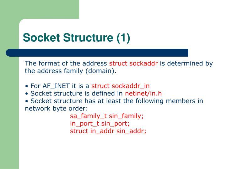 Socket Structure (1)