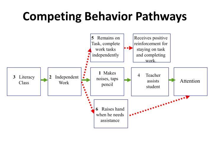 Competing Behavior Pathways