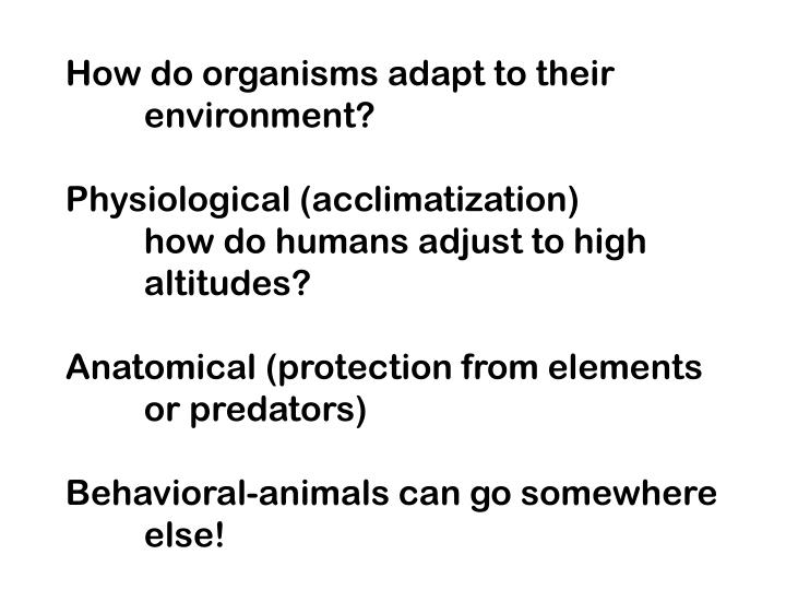 How do organisms adapt to their