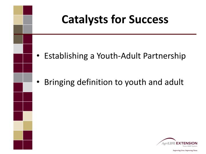 Catalysts for Success