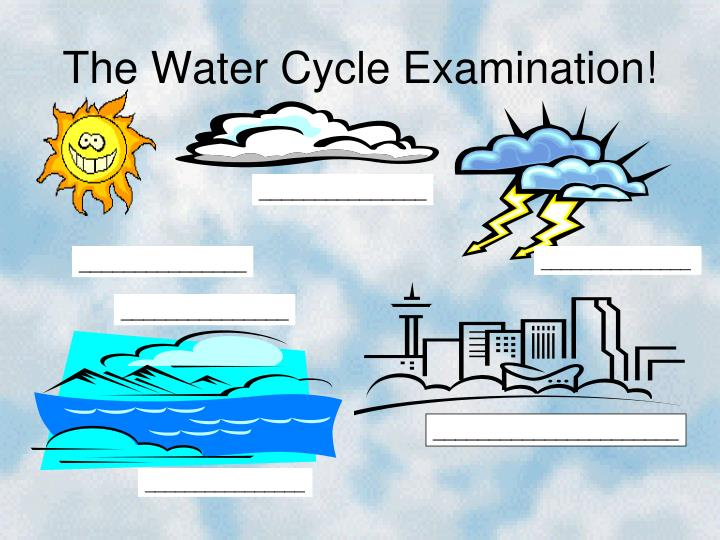 The Water Cycle Examination!
