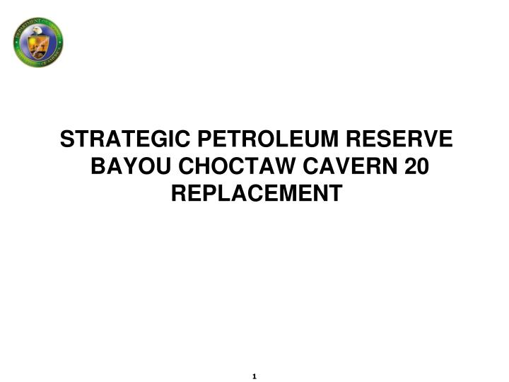 strategic petroleum reserve bayou choctaw cavern 20 replacement n.