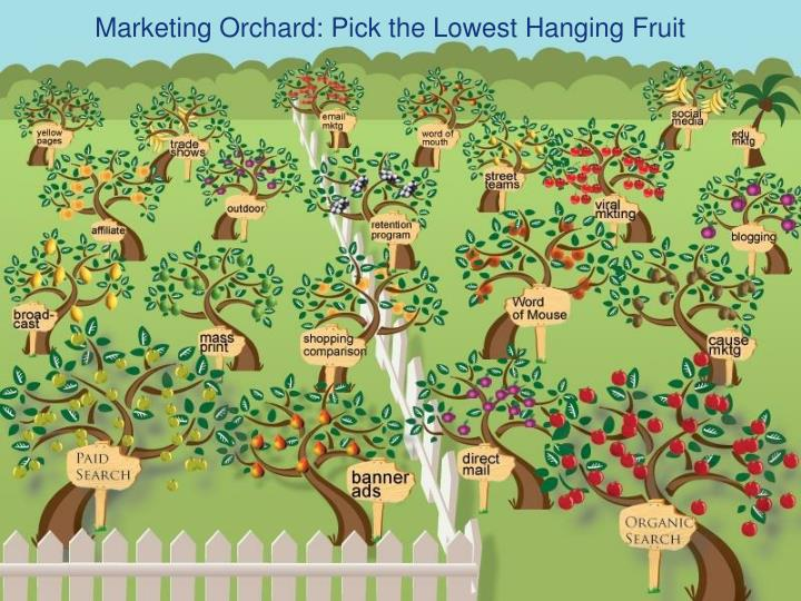 Marketing Orchard: Pick the Lowest Hanging Fruit