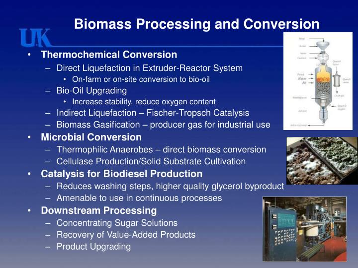Biomass processing and conversion