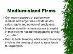 medium sized firms