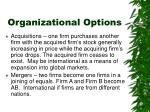 organizational options1