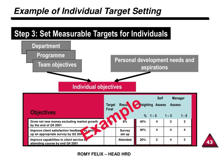 Example of Individual Target Setting