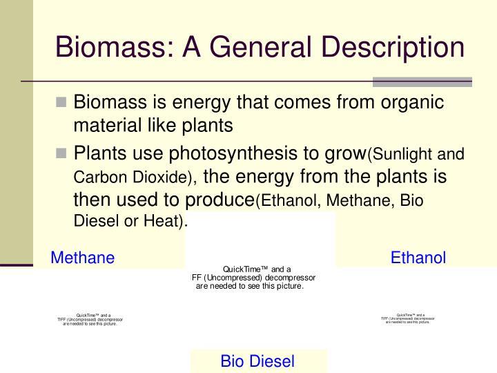 Biomass a general description
