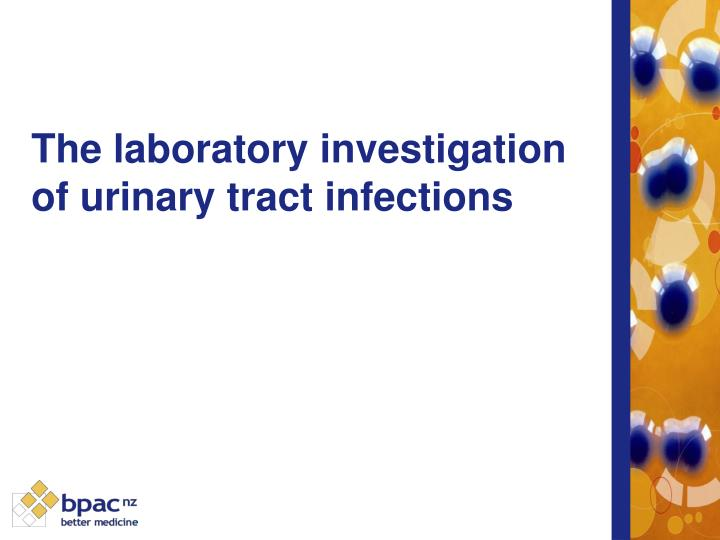 the laboratory investigation of urinary tract infections n.
