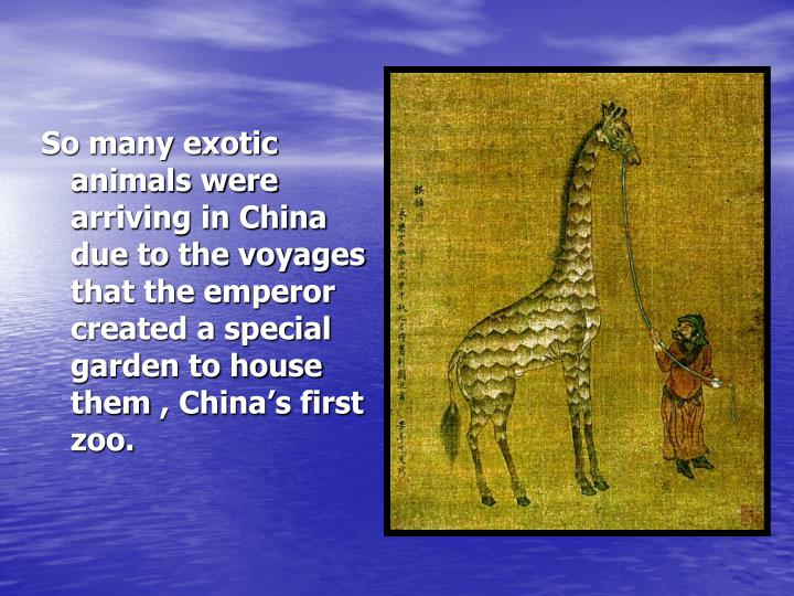So many exotic animals were arriving in China due to the voyages that the emperor created a special garden to house them