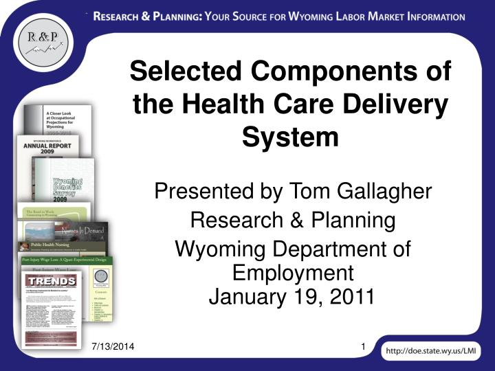selected components of the health care delivery system n.