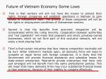 future of vietnam economy some lows