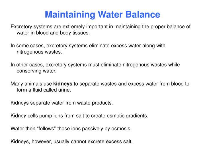 Maintaining water balance