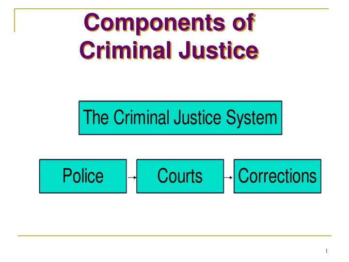 components of the criminal justice system Components of the criminal justice system the criminal justice system consists of three main components those components are polices, courts, and corrections each component will be defined according to the american criminal justice system.