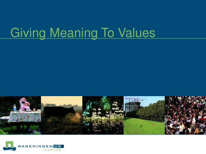 giving meaning to values n.