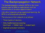 the backpropagation network