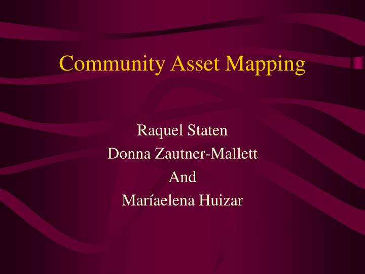 community asset mapping n.