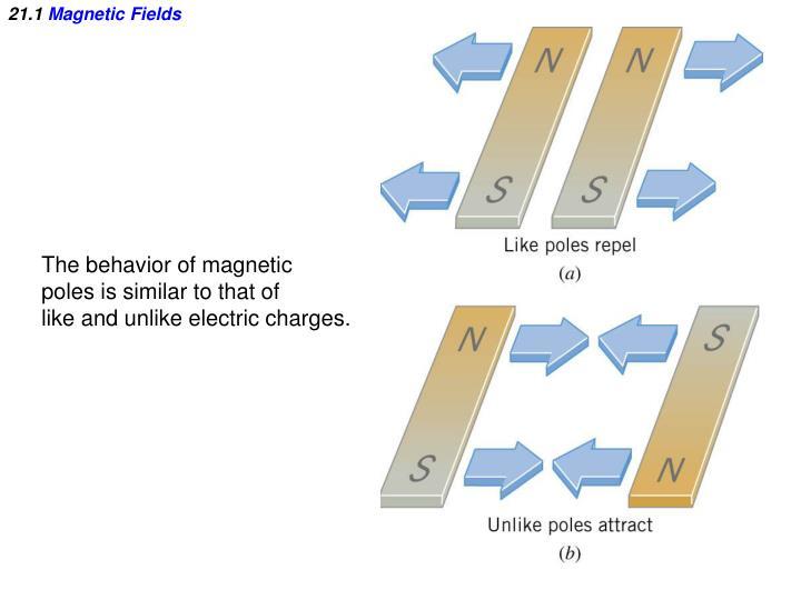 21 1 magnetic fields1