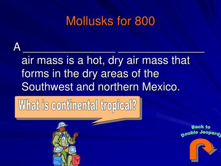 What is continental tropical?