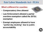 fair labor standards act flsa1