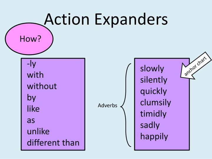 Action Expanders