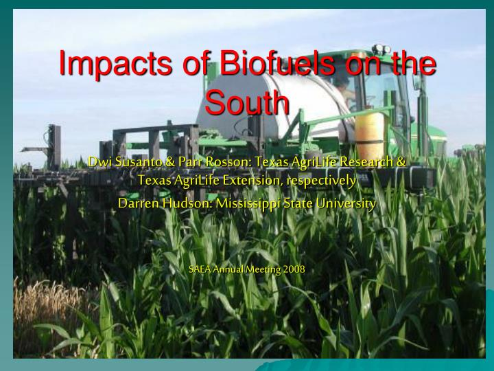 impacts of biofuels on the south n.