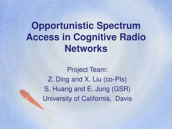 Opportunistic spectrum access in cognitive radio networks