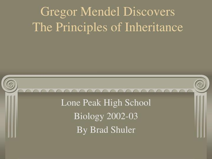 gregor mendel discovers the principles of inheritance n.